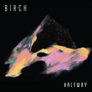 birch-halfway
