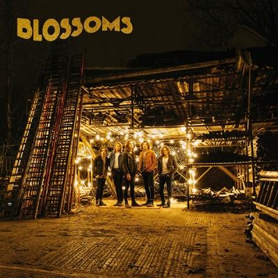 blossoms-album