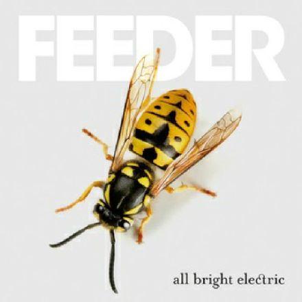 feeder All Bright Electric