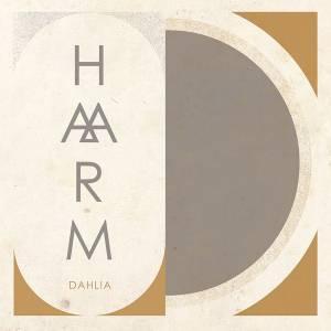 HAARM Dahlia